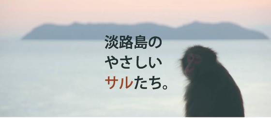 淡路モンキーセンター企画紹介