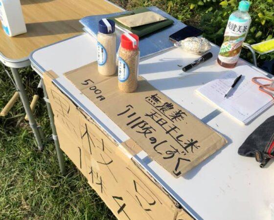 川阪黒枝豆販売(収穫体験付)