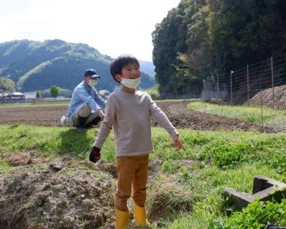 4月24日の黒豆ボランティア